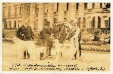 1909 German Emperor Wilhelm II, King of Prussia, with his Horse and two Borzois waiting to be painted, Potsdam